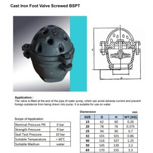 [1]Cast Iron Foot Valve BSPT