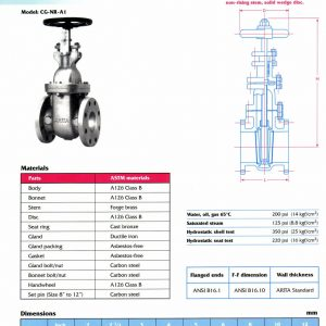 [1]Cast Iron Gate Valve Class 125 (NON RISING STEM)