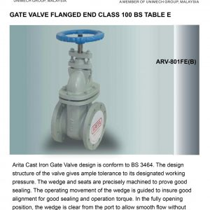 [1]Cast Iron Gate Valve Table E FE