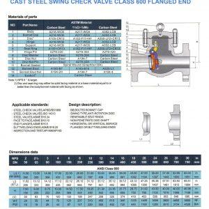 [1]Cast Steel Swing Check Valve Class 600 FE